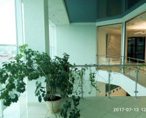 Бизнес центр Компас седьмой этаж
